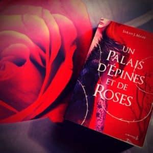 Chronique : Un Palais d'épines et de roses de Sarah. J. Maas