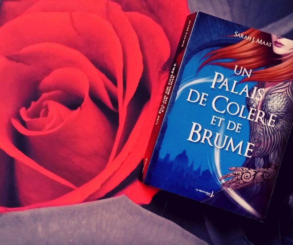 livre : un palais d'épines et de roses de Sarah. J. Maas